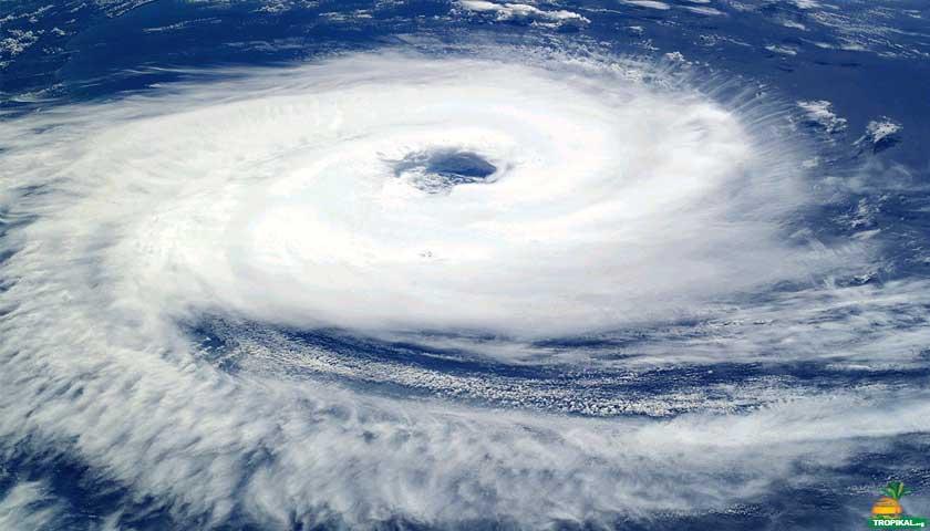 Tropikal Siklon