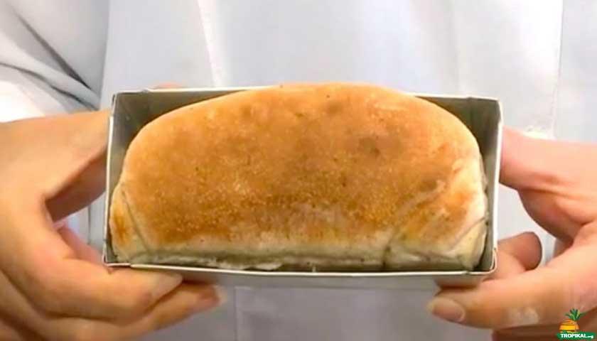 Kırmızı etten fazla protein içeren ekmek