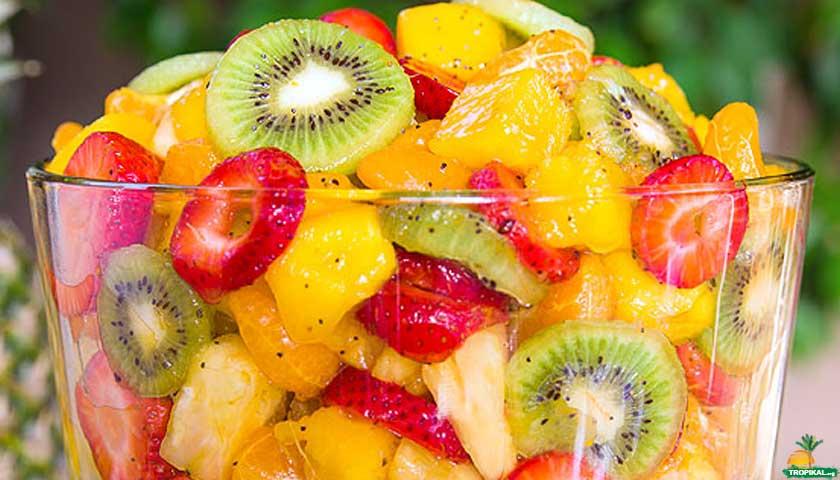 Tropikal Meyve Bahçesi kase