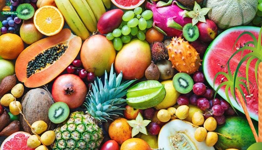 Tropikal meyve alım | satım